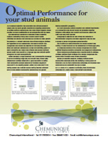 Optimal Performance For Your Stud Animals