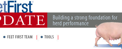 FeetFirst Update. Building A Strong Foundation For Herd Performance